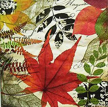 Papier - S804 - Servítky - jeseň, autumn, list, javor - 7262081_