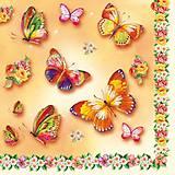 Papier - Motýle - 7263973_