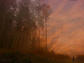 Obrazy - JESENNÝ PODVEČER fotoplátno 70x50  cm - 7282799_