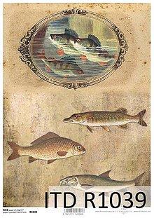 Papier - ryžový papier ryby - 7298557_