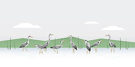 Grafika - Tiché jazero a volavky - zelené - 7305902_