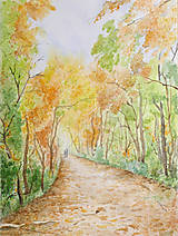 Obrazy - Jeseň v lese - 7328887_