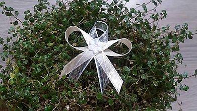 Pierka - Svadobné pierko pre svadobčanov...... - 7366360_