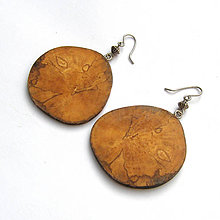 Náušnice - Špaltovaná breza - z halúzky - 7364144_
