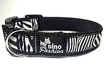 Obojok Zebra