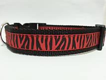 Obojok Red Zebra