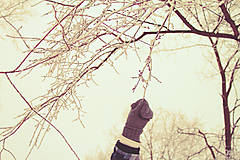 Fotografie - Chyť si zimu.. - 7387373_