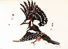 Kresby - Vtáctvo - ilustrácie, kresby a maľby A4 - 7387422_