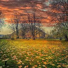 Obrazy - JESEŇ V PARKU fotoplátno 60x60 cm - 7394817_