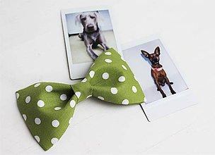 Pre zvieratká - Motýlik - na obojok pre psíka - zelený s bodkami  - 7400142_