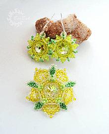 Sady šperkov - Ľadové kvietky - Swarovski obšívané náušnica a brošňa - 7403837_