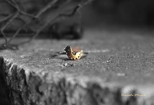strieborný prsteň - steampunk vtáčik