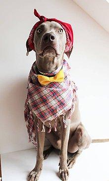 Pre zvieratká - Motýlik - na obojok pre psíka - žltý s malými bodkami - 7444154_