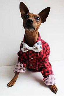Pre zvieratká - Motýlik - na obojok pre psíka - svetlosivý hipster - 7444164_