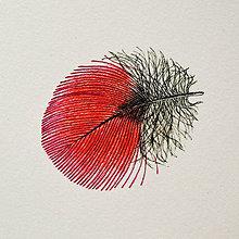 Kresby - Červené pierko - 7532137_