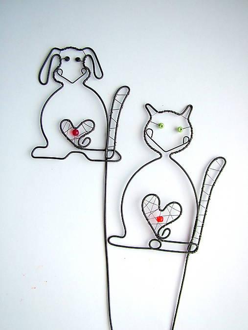 pes a mačka zápich