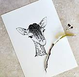 Kresby - Malá žirafa - 7554719_