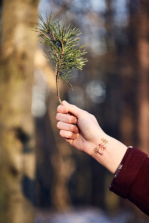 Dočasné tetovačky - Lesné