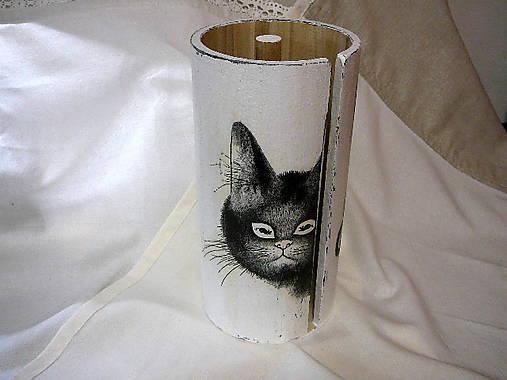 Veľká pekná čierna mačička