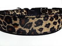 Pre zvieratá - Obojok Leopard - 7604068_