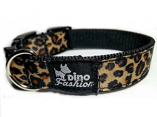 Obojok Leopard