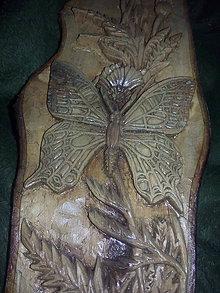 Obrazy - Motýľ zo snov prekrásnych - 7604994_