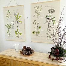 Obrázky - Retro botanický plagát - 7617619_