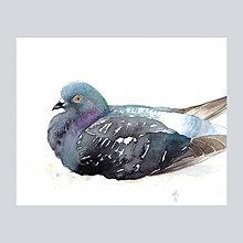 Obrazy - Odpočinek - originál, akvarel - 7619216_