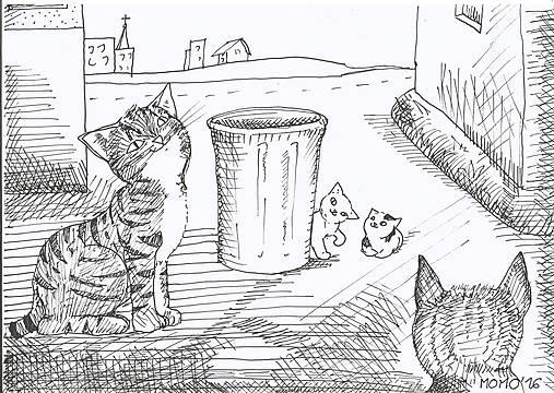 Mačičky, smetný kôš a sídlisko -- fixka