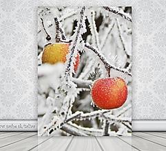 Fotografie - Fotografia - Jabĺčka v zime - 7622980_