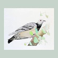 Obrazy - Na větvi - originál, akvarel - 7627587_