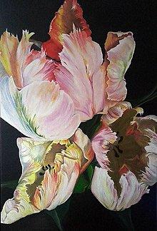 Obrazy - Papagáj tulipány - 7633158_