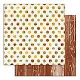 Papier - PS115 Set 6 obojstranných papierov 30,5 x30,5 cm 180g/m² kolekcia  Listy a príroda - 7687089_