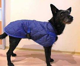 Pre zvieratká - Vesta pre psa modrá - 7687941_