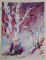 Obrazy - brezy - mrzne pred svitaním - 7693615_