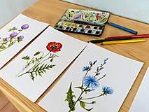 Obrazy - Bylinka v akvareli podľa želania - 7699657_
