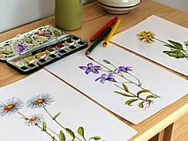 Obrazy - Bylinka v akvareli podľa želania - 7699661_