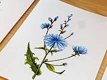 Obrazy - Bylinka v akvareli podľa želania - 7699664_