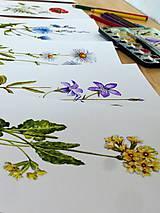 Obrazy - Bylinka v akvareli podľa želania - 7699672_