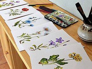 Obrazy - Bylinka v akvareli podľa želania - 7699618_