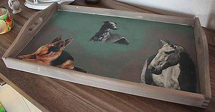 Nádoby - robené na zákazku podnos s domácimi zvieratkami - 7721771_