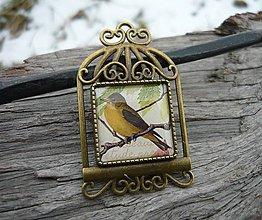 Odznaky/Brošne - Brož Vintage Bird - 7727926_