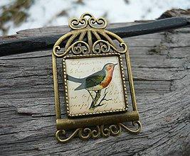 Odznaky/Brošne - Brož Vintage Bird - 7727941_