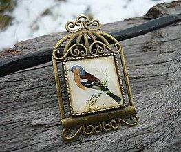 Odznaky/Brošne - Brož Vintage Bird - 7727957_