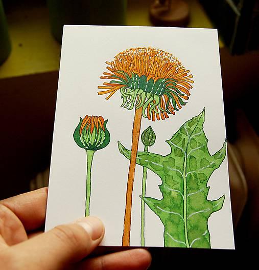 Kresba Byliniek Farebno Sashe Sk Handmade Kresby