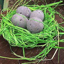 Dekorácie - Kraslice so zeleným hniezdom - 7787602_