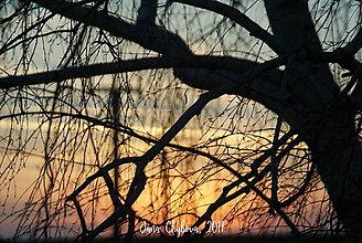 Fotografie - Cez OKNO - 7801499_