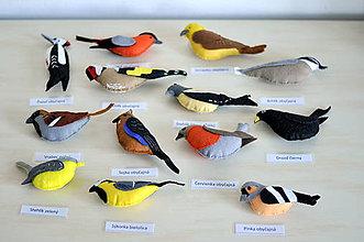Hračky - Záhrada plná vtákov - 7801652_