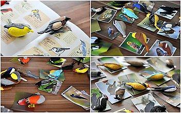 Hračky - Záhrada plná vtákov - 7801750_