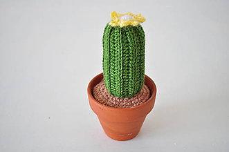 Dekorácie - Kaktus Hester - 7805458_